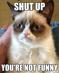 shut up you re not funny cat meme cat planet cat planet