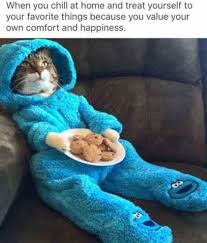 Happiness Meme - when you chill at home and treat yourself to your favorite things