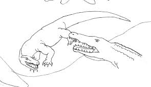 komodo dragon attacked by crocodile coloring pages download