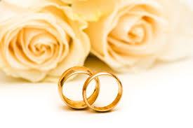 wedding rings roses flower wedding rings roses flowers hd wallpaper