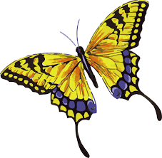 beautiful yellow butterfly with purple dots watercolor