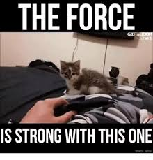 The Force Is Strong With This One Meme - 25 best memes about the force is strong with this one the