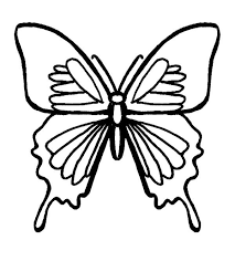159 butterfly printables images butterflies