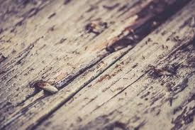 rustic wood free photo rustic wood texture free image on pixabay 698621