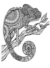 http colorings co coloring pages animal patterns