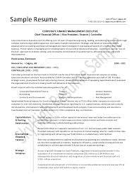 Cfo Resume Samples by Home Design Ideas Cfo Resume Example P1 Cfo Resume Examples