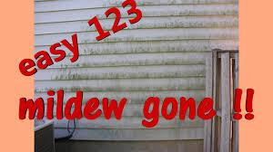 creepy mold u0026 mildew on house or deck remove easy youtube