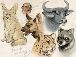 sketch animals by booyeh on deviantart