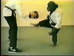 imagenes gif karate karate monkey gif karate sports animals discover share gifs