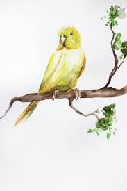 Home Decor Birds by 194 Best Watercolor Images On Pinterest Watercolors Monitor