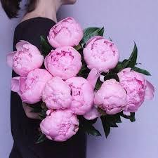 Girls Favourite Flowers - 325 best happy flowers images on pinterest flower power flower