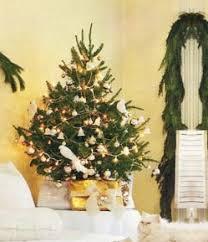 tabletop christmas tree premium grade mail order fraser fir tabletop real christmas tree