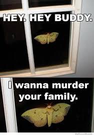 Hey Buddy Meme - hey buddy i wanna murder your family weknowmemes
