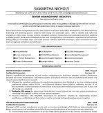 Construction Superintendent Resume Templates Dave Cann Faa Resume Write Me Cheap Custom Essay Online Resume