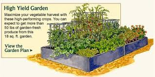 permaculture vegetable garden layout