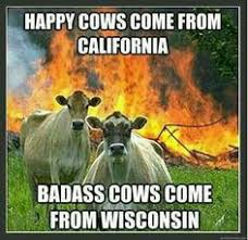 Wisconsin Meme - a collection of wisconsin memes infamous wisconsin