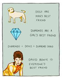 Bowie Meme - david bowie is everyone s best friend music pinterest