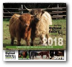 north central highland cattle association nchca home