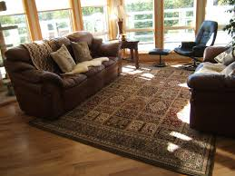 Livingroom Rug Projects Design Brown Living Room Rugs Manificent Stylish 20 Best