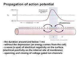 example of conduction