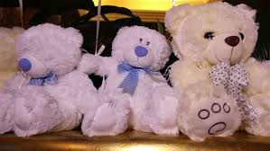 teddy bears in balloons teddy bears sitting in a row white teddy bears helium balloons