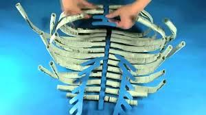 roylco r60558 newspaper skeleton youtube