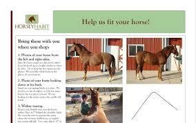 horse saddle saddle fitting horsey habit saddlery and tack