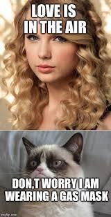 Funny Meme Songs - 63 best grumpy cat memes images on pinterest funny stuff ha ha