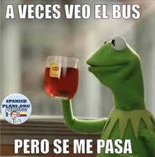 Memes In Spanish - spanish memes spanishplans org