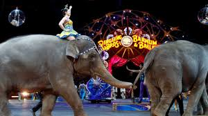 Barnes And Bailey Circus The End Of An Era Ringling Bros Circus To Close After 146 Years