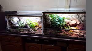 Vivarium Wood Decor Natural Vivarium For Leopard Geckos Youtube
