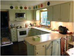 lime green kitchen ideas lime green kitchen cabinets truequedigital info