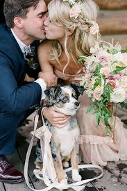 9 dapper ways to dress your dog for your wedding day southern living