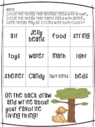 eighth grade science worksheets printable law and kindergarten