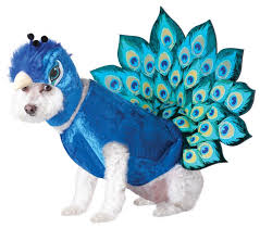 2017 peacock design pets costume halloween animal cosplay clothes