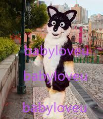 Halloween Costumes Husky Dog Buy Wholesale Husky Costume China Husky Costume
