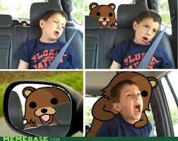 David After Dentist Meme - 111 best bear collection images on pinterest funny animals