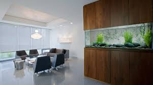 interior fish tank decor ideas small decoration decorations