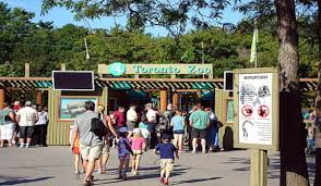 toronto zoo admission location cost hours maps and events
