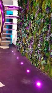 98 best vertical gardening images on pinterest vertical gardens