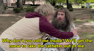 Dumb And Dumber Memes - dumb and dumber to gifs search find make share gfycat gifs