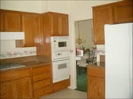 Professional Spray Painting Kitchen Cabinets by Kitchen Stained Wood Kitchen Cabinets Spray Painting Kitchen