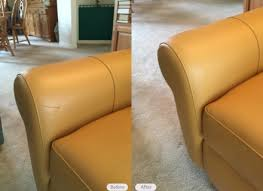Sofa Scratch Protector Leather Sofa Scratch Alleycatthemes Com