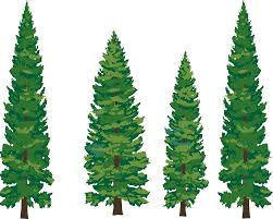 oak trees clipart free images clipartbarn