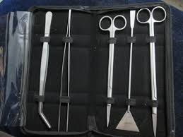 Aquascaping Tools Aquascaping Tools Buy 30 Cm Aquascaping Tools Kit Aquascaping
