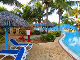 really pretty trees and plants by the pool picture of sol cayo