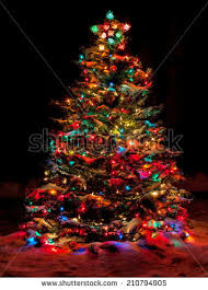 christmas tree with colored lights snow covered christmas tree multi colored stock photo royalty free