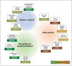 a review of rate control in atrial fibrillation and the rationale