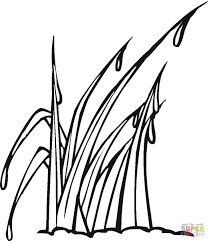 grass coloring page wallpaper download cucumberpress com