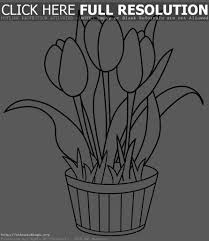 tulip coloring pages to print mediafoxstudio com